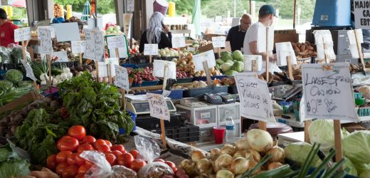 Top Reasons to You Should Choose to Buy Produce at a Local Farm