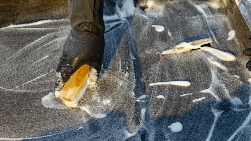 Top Reasons Why Homeowners Should Always Keep Their Carpets Clean